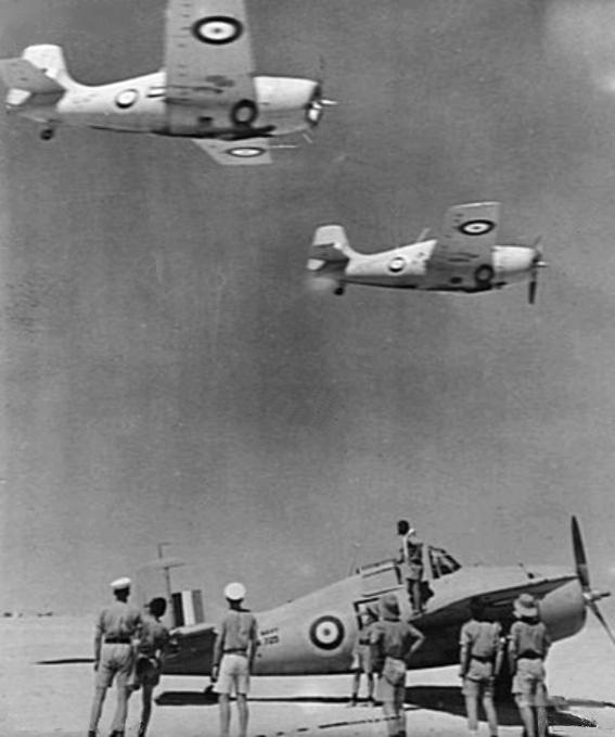 Martlet_IIIs_805_NAS_in_North_Africa_1941.jpg