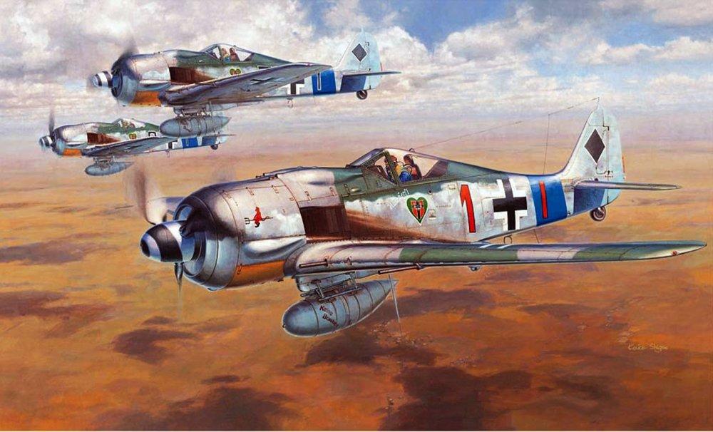 Hasegawa Fw 190A.8.jpg