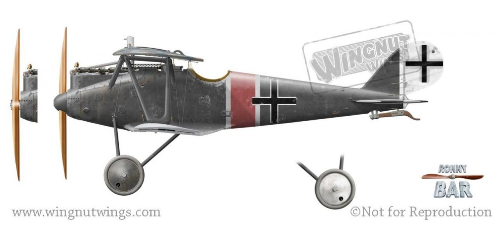 Pfalz D.IIIa, Jasta 37, Late 1918.jpg