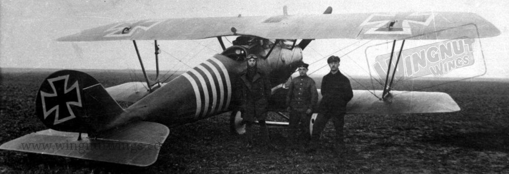 Pfalz D.IIIa Max Hitschler - Jasta 18.jpg