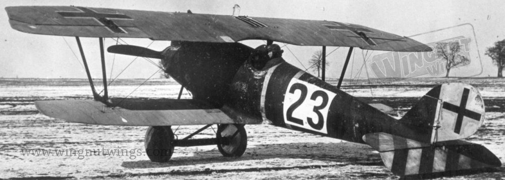Pfalz D.IIIa ex-Jasta 37 now with Jastaschule markings (Greg Van Wyngarden).jpg
