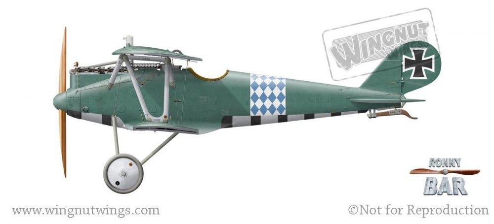 Pfalz D.IIIa 5895_17, Franz Hailer, Jasta 29, Late 1917- Early 1918.jpg