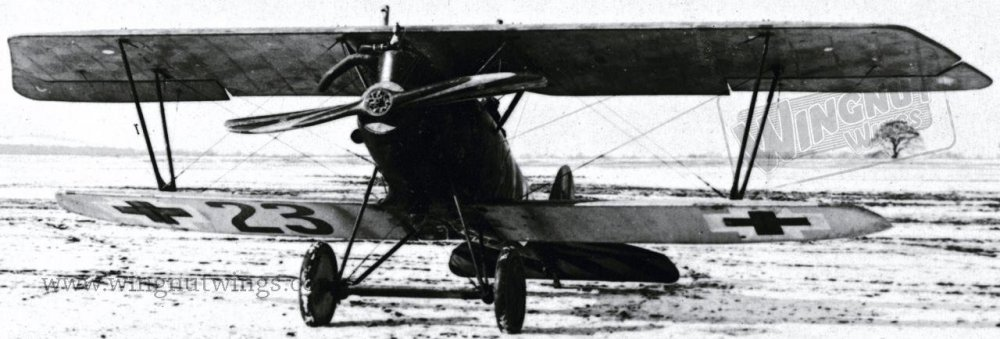 Pfalz D.IIIa ex-Jasta 37 now with Jastaschule markings (AL0714-029 ).jpg
