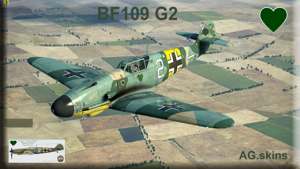 interface BF109G2 no s.jpg