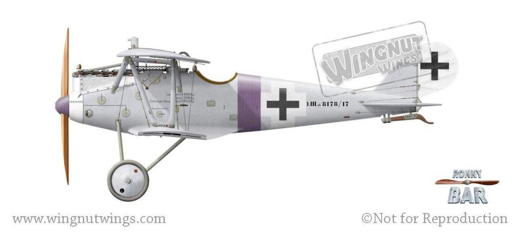 Pfalz D.IIIa 8178_17, Rudolf Stark, Jasta 34b, May 1918 (11 victories).jpg