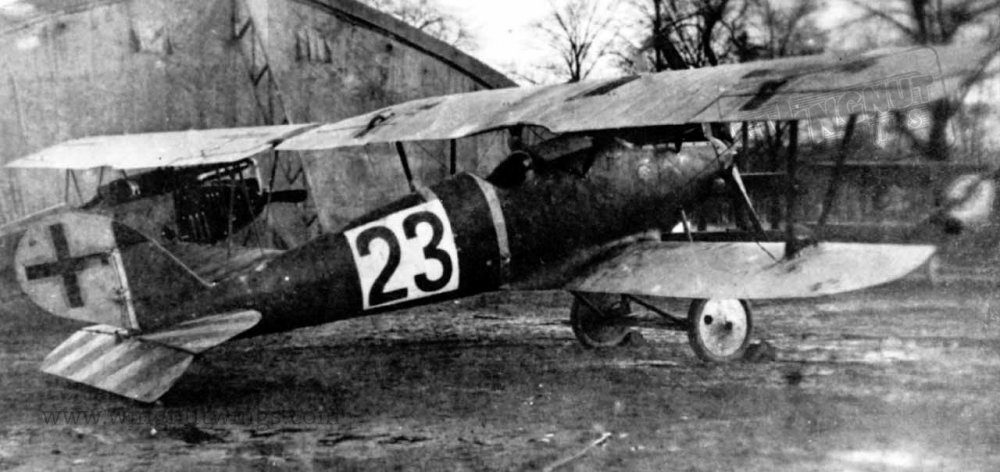 Pfalz D.IIIa ex-Jasta 37 now with Jastaschule markings (01).jpg