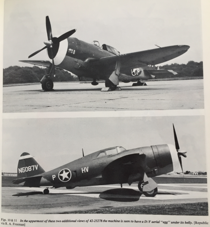 P-47 factory fresh.png