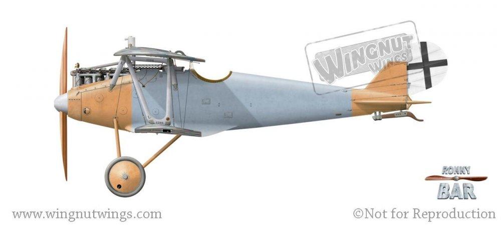 Pfalz D.IIIa 1296_18, Jasta 56, Late 1918.jpg