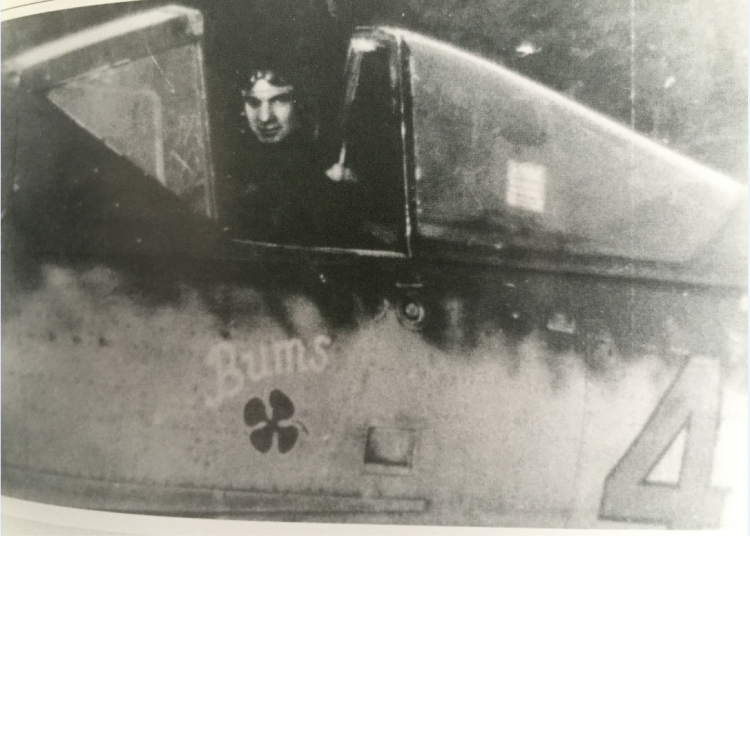 Fw 190D-9 Bums.png