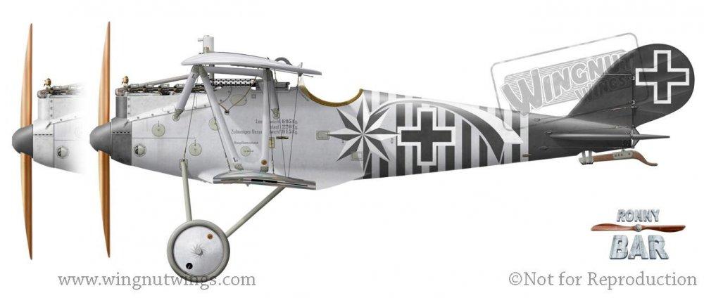 Pfalz D.IIIa, Max Holtzem, Jasta 16b, early 1918 (2 victories)..jpg
