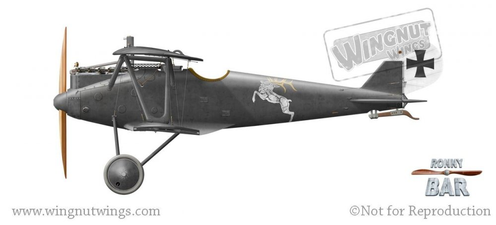 Pfalz D.IIIa, Carl Degelow, Jasta 7, March 1918 (30 victories).jpg