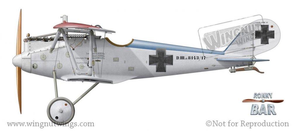 Pfalz D.IIIa 8143_17, Walter Ewers, Jasta 77b, April 1917 (8 victories).jpg