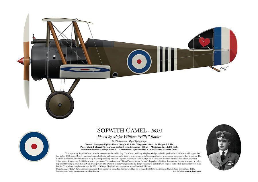 sopwith-camel-b6313-june-1918-side-profile-view-ed-jackson.jpg