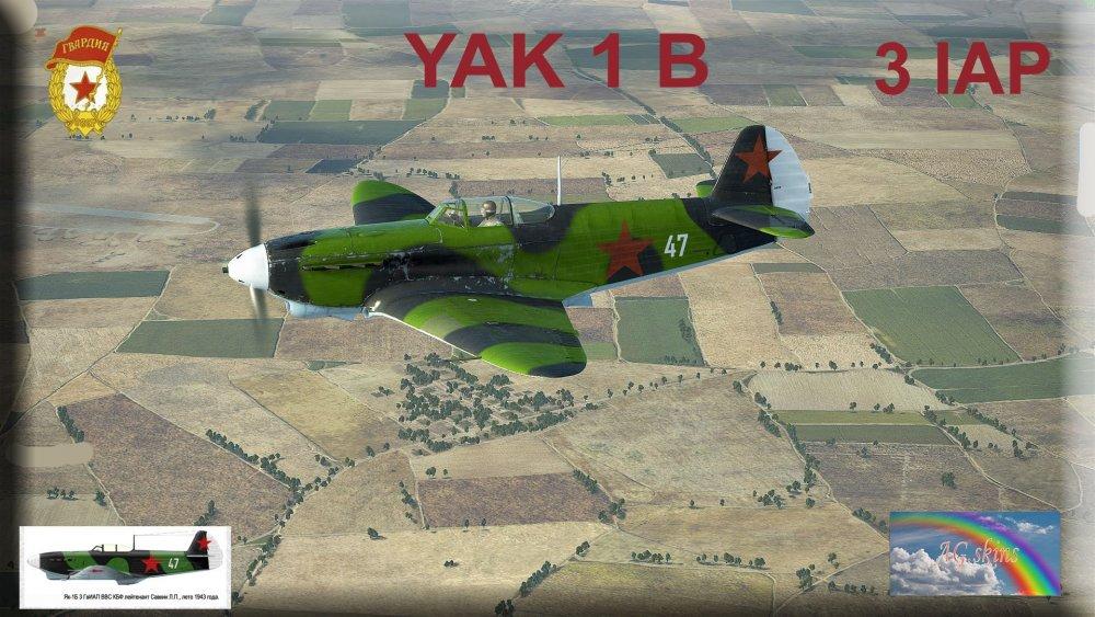 interface Yak 1B 3 IAP.jpg