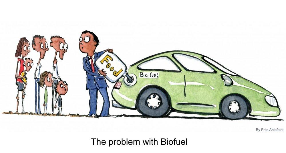 bio-fuel-cars-poor-hungry-people-frits-ahlefeldt1.jpg