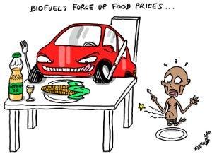 biofuels-300x218.jpg