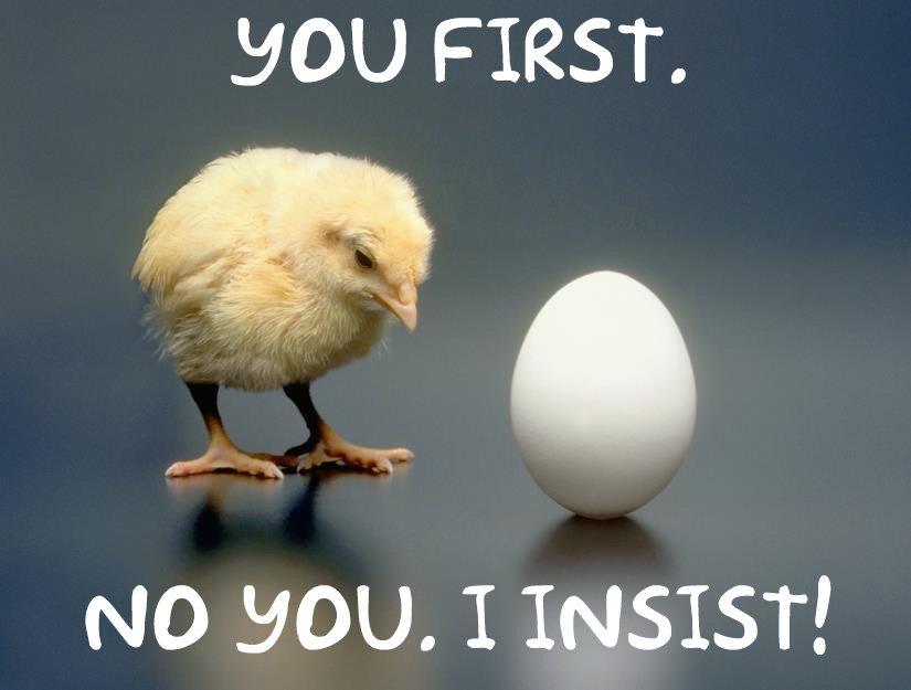 chicken-egg.jpg.efad8682177d8b116ce359a2b8e0881d.jpg