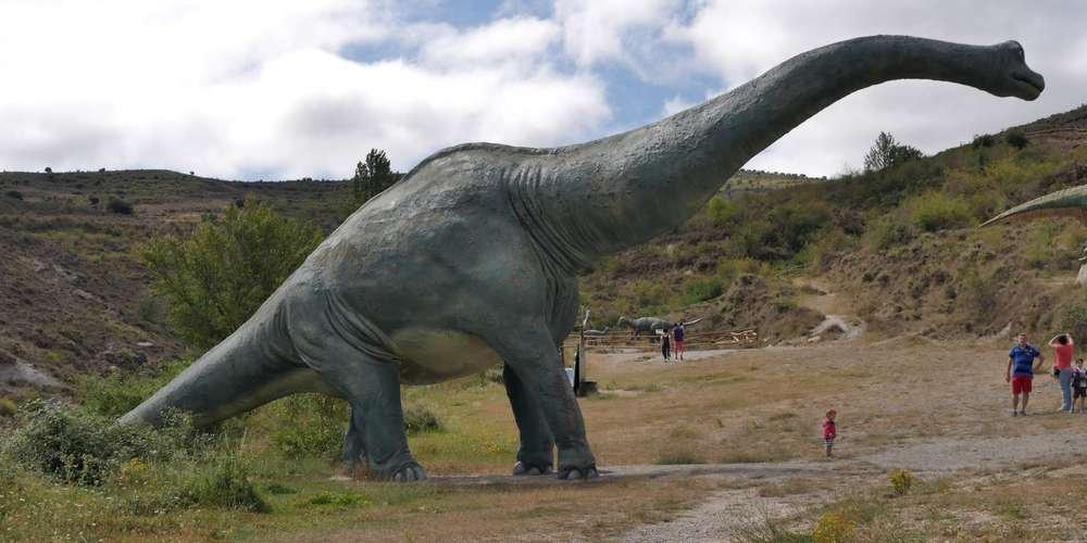 le-pied-appartiendrait-a-un-brachiosaure-l-un-des-plus-grand-dinosaures-connus.jpg
