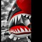 Sharkzz