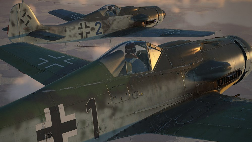 FW190-D9s Tight.jpg