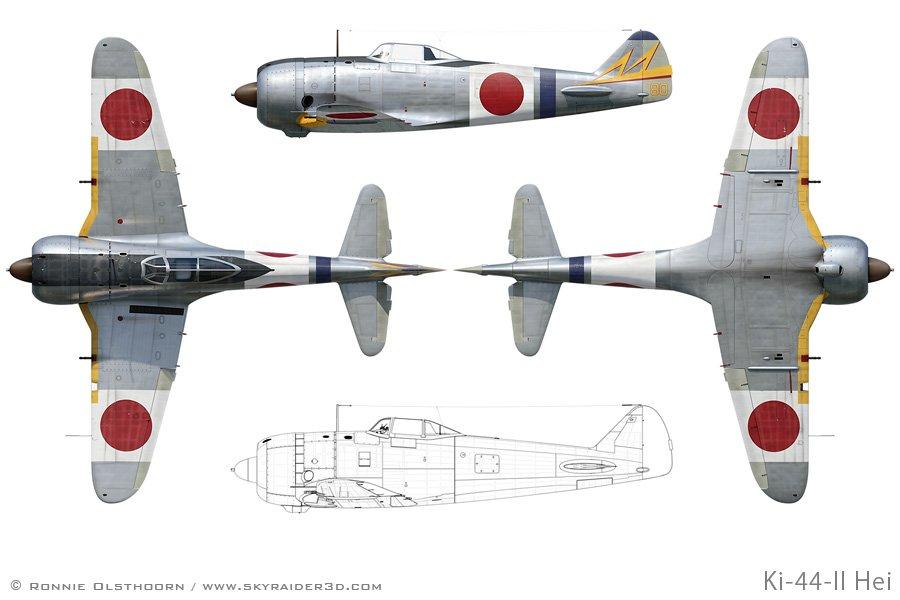 Ki-44_profiles_sample_900.jpg.d0bb3dabef32c12eeede3614ce3ede22.jpg