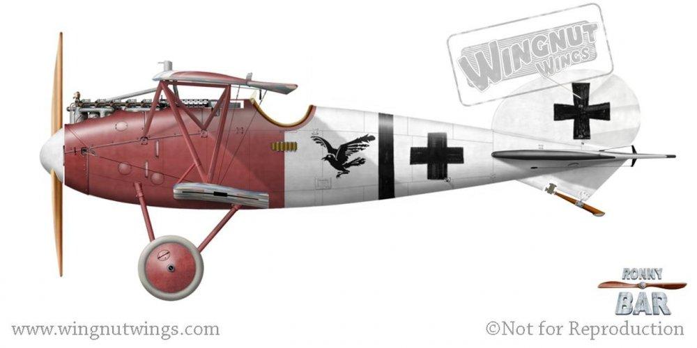 B_Albatros D.Va (OAW)questionmark, Jasta 18, May 1918.jpg