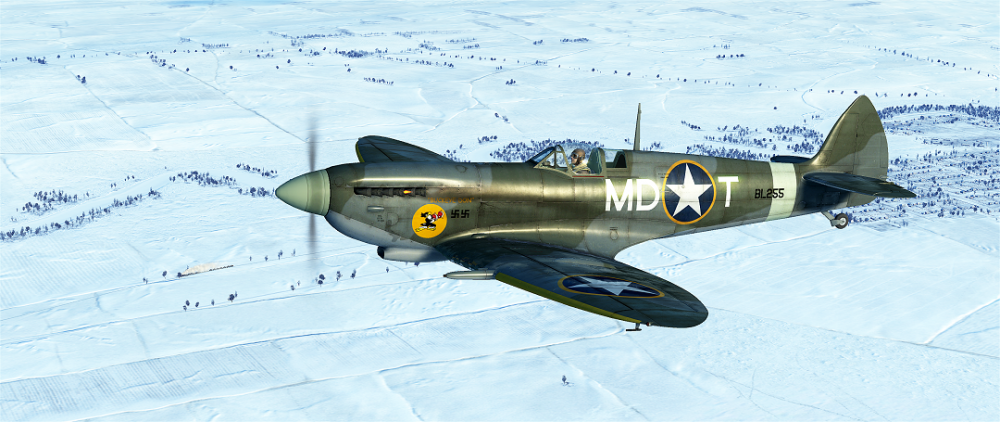 IL-2  Sturmovik  Battle of Stalingrad Screenshot 2019.06.11 - 23.04.57.16.png