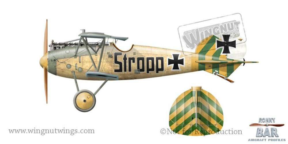 Albatros D.Va 7161_17 'Stropp', possibly Erich Gurgenz, Jasta 46, April 1918 (1 victory).jpg