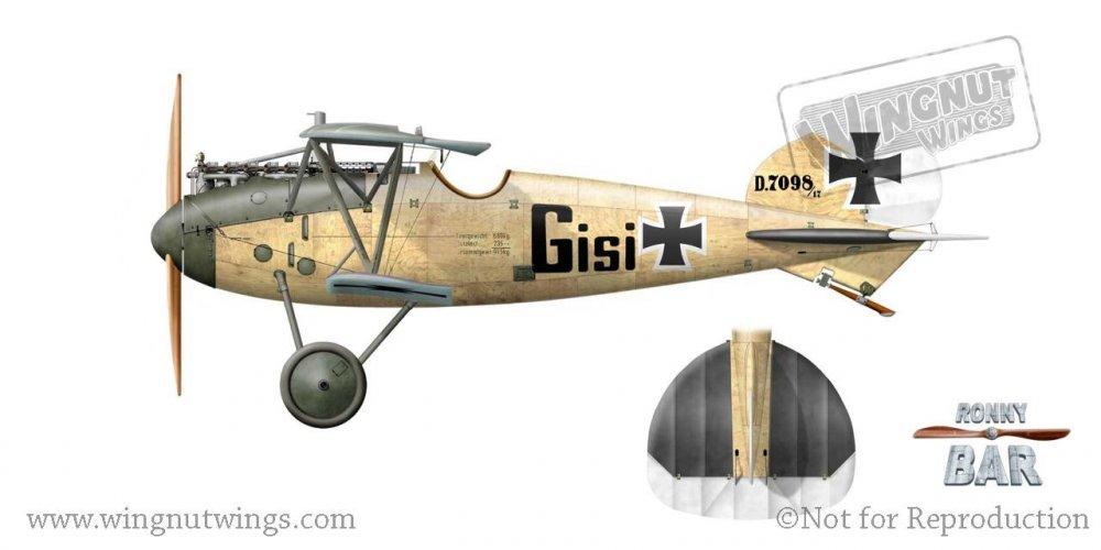 B - Albatros D.Va 7098_17, Gisi, Jasta 17, Early 1918.jpg