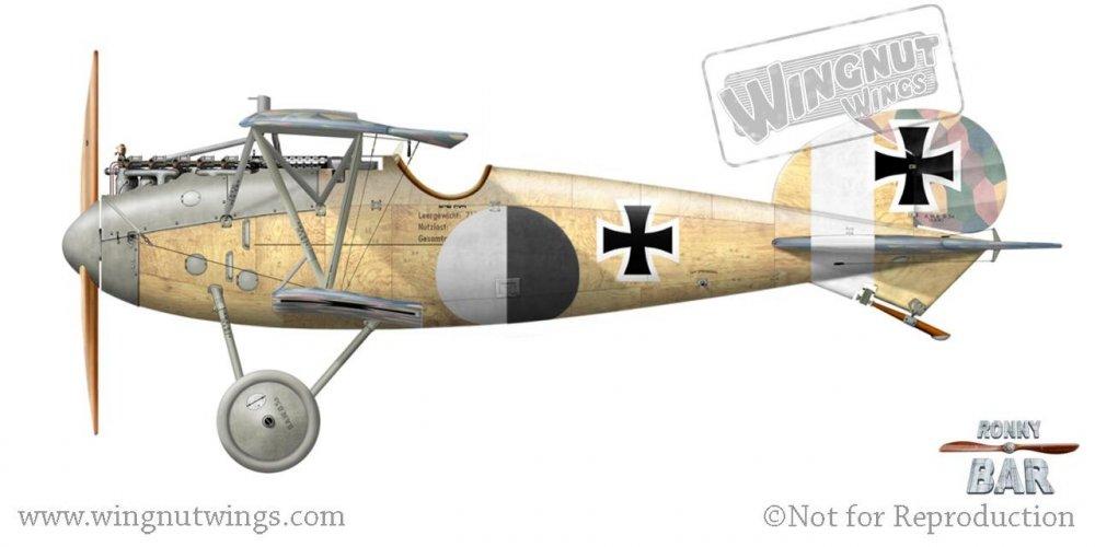 E_Albatros D.Va (OAW), Friedrich Ritter von Roth, Jasta 23b, early 1918 (28 victories).jpg
