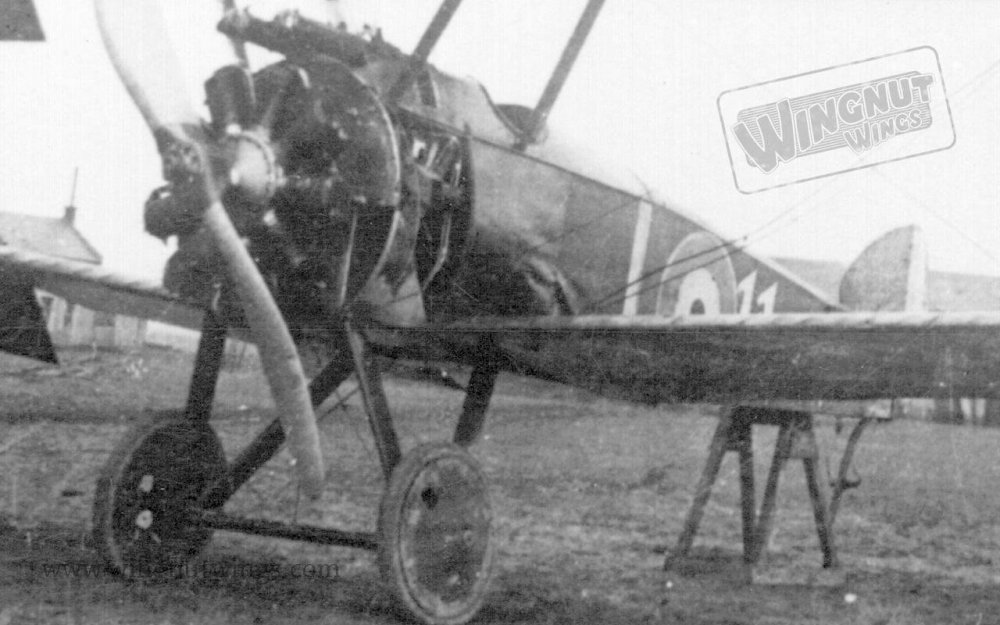 Sopwith F.1 Camel B5417 '11' of 54 Sqn captured (Greg Van Wyngarden) (2).jpg