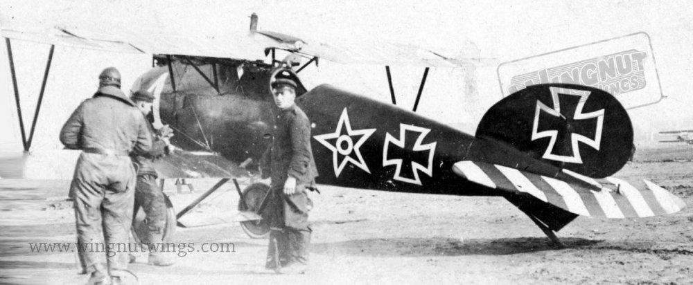 Albatros D.Va Karl Haustein - Jasta 37 (AL0240-008).jpg