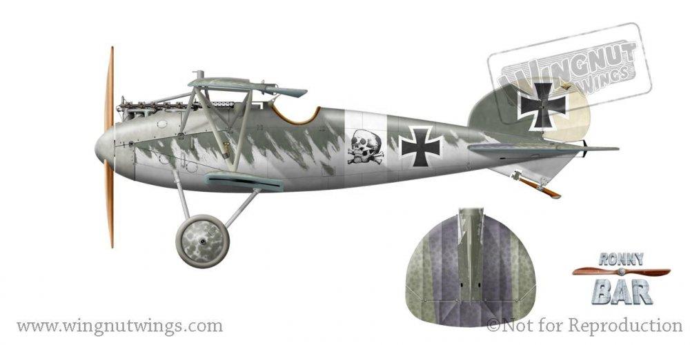 Albatros D.V, Kurt Monnington, Jasta 15, 1917 (8 victories).jpg