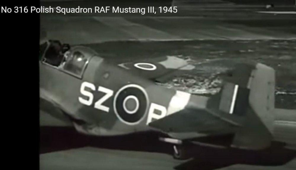 Mustang_III_1945.thumb.JPG.9fd254b25764df69a64a90e7beba1875.JPG