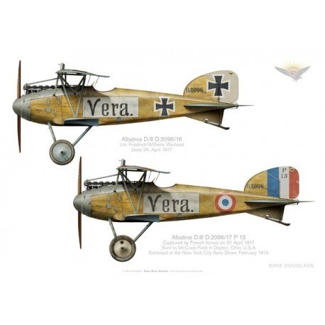 albatros-diii-d209616-ltn-friedrich-wilhelm-wichard-jasta-24-captured-in-april-1917.jpg