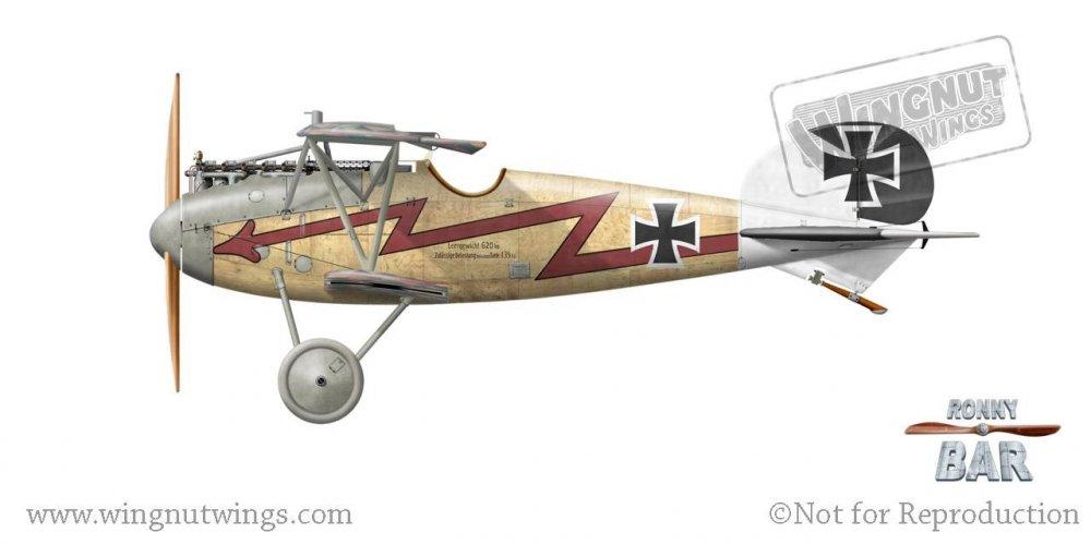 Albatros D.V, Adolf Schreder, Jasta 17, 1917-18 (1 victory).jpg