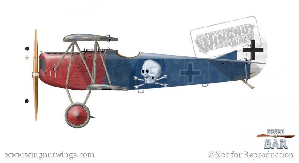 Fokker D.VII 382_18, Georg von Hantelmann (25 victories) & Kurt Wustoff (27 victories), Jasta 15, June 1918.jpg