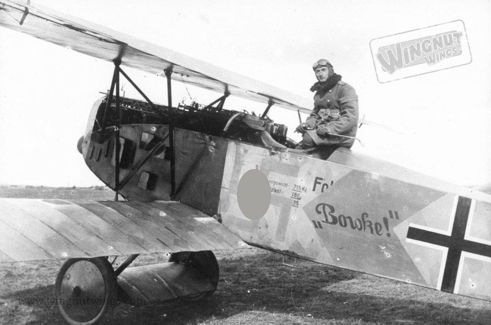Fokker D33.jpg