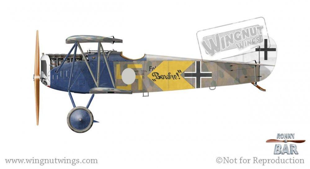 Fokker D.jpg