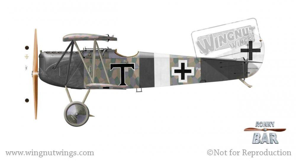 Fokker D.VII (OAW) 2052_18, Karl Thom, Jasta 21s, 1918 (27 victories).jpg
