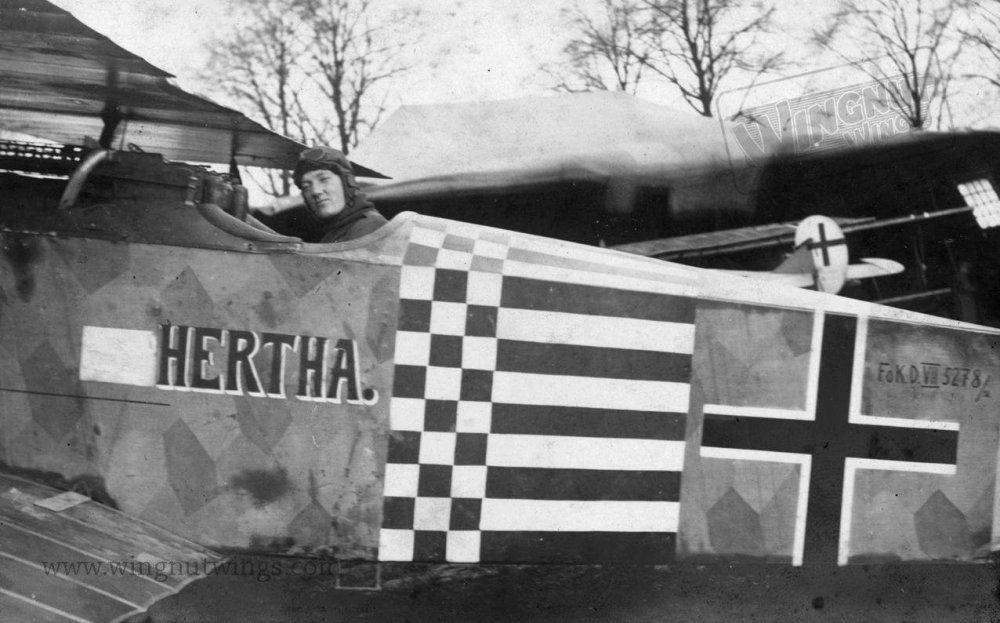 Fokker D.VII (Alb) 5278_18 after the Armistice (0806-004).jpg