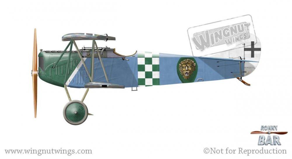 Fokker D.VII (OAW), Franz Buchner, Jasta 13, October-November 1918 (40 victories) (1).jpg
