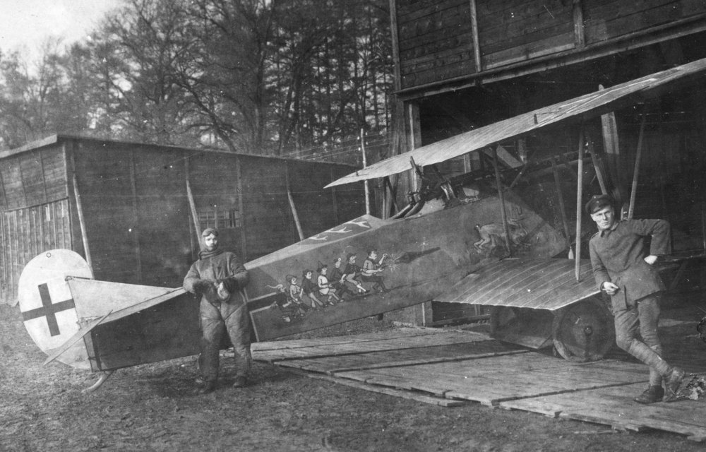 Fokker DVII (OAW) no 4649_18 Jasta 65_b.jpg