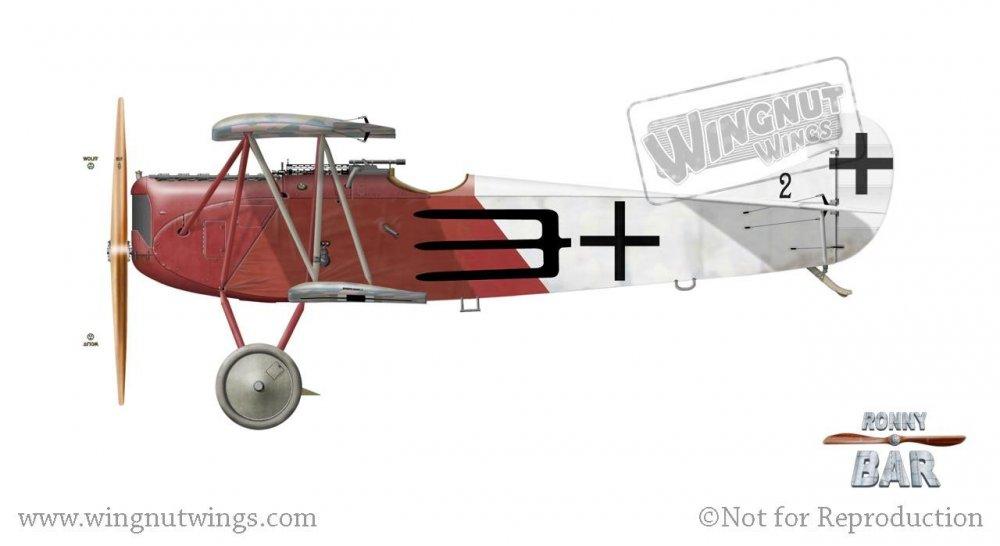 Fokker D.VII (Alb) 2, Otto Creutzmann (8 victories) & Josef Raesch (7 victories), Jasta 43, June - July 1918.jpg