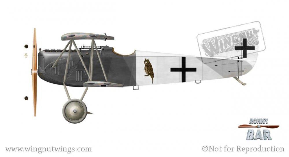 Fokker D.VII F, Fritz Haack, Jasta 46, Late 1918.jpg