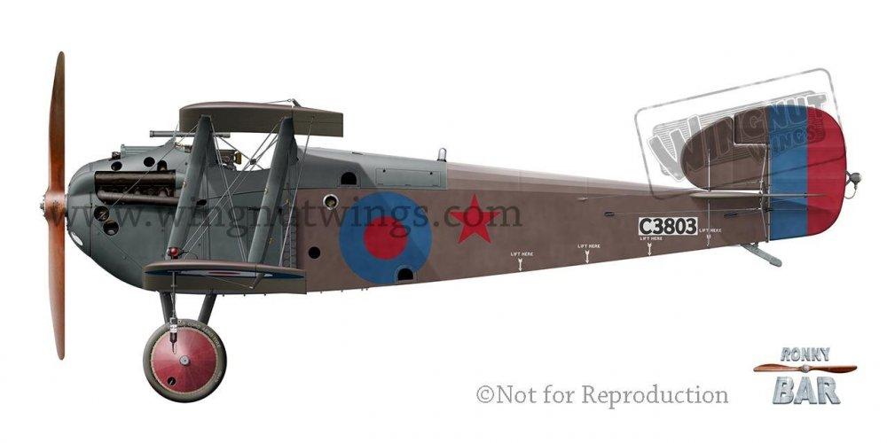 B_Sopwith 5F.1 Dolphin C3803 Red Star 6, SARD, March 1918.jpg