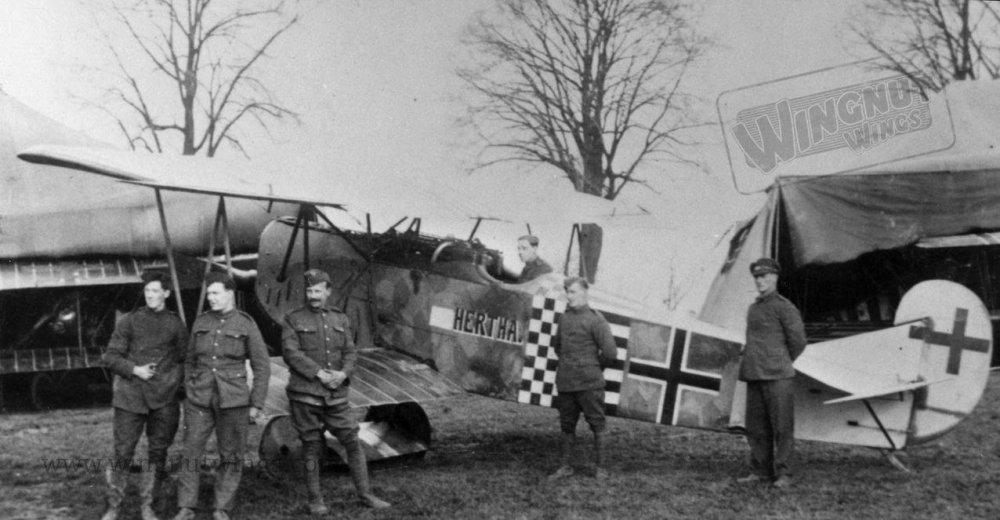 Fokker D.VII (Alb) 5278_18 after the Armistice (Greg Van Wyngarden).jpg