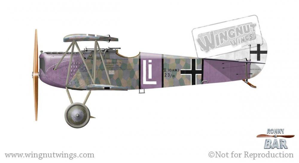 Fokker D.VII (OAW) 4523_18, Rudolf Stark, Jasta 35b, late 1918 (11 victories).jpg