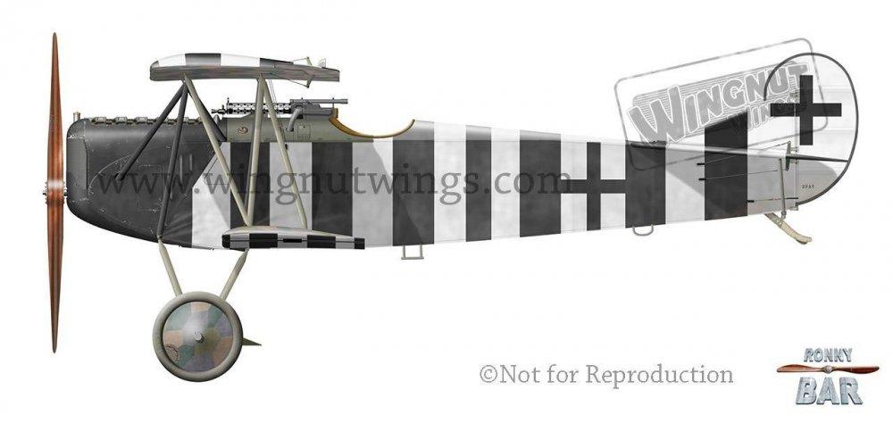 E_Fokker D.VII, Bruno Loerzer, Jasta 26_JG III, November 1918 (44 victories).jpg