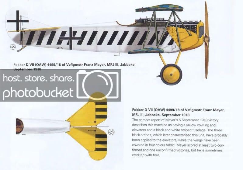 Profile-FokkerDVIIMayerMFJIII.jpg